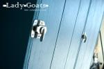 LadyGoats-Hardware